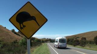 Day 25 - Wellington To Havelock North: Camping In New Zealand, Huge Kiwi, Yeah Right, Te Mata Peak