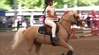 Campionati Italiani 2018 - Pony games  - dressage - salto ostacoli - Le Siepi Cervia