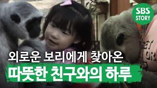 TV동물농장(513회)_09