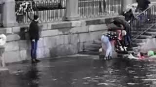 Парень вытащил собаку из воды и спас её - дело было в Санкт-Петербурге