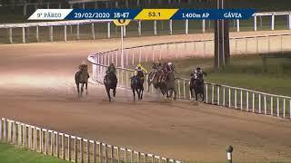 Vidéo de la course PMU PREMIO FALERNO (INTERNET)