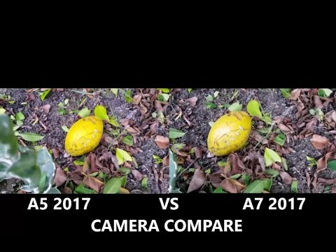 galaxy a7 2017 vs a5 2017 camera test youtube. Black Bedroom Furniture Sets. Home Design Ideas