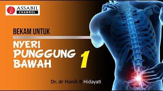 M96 Webinar Series - Talk 3 Topik Penanganan Nyeri Punggung Bawah, presentasi oleh dr. Indri Listyor.