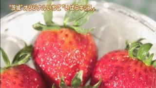 本県は、春・夏は「メロン」、秋は「梨」「ぶどう」など様々なフルーツ...