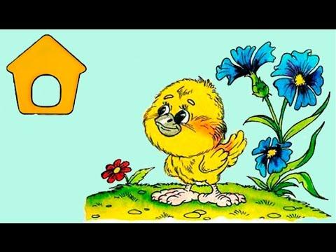 Как цыпленок сочинил сказку!!! 75