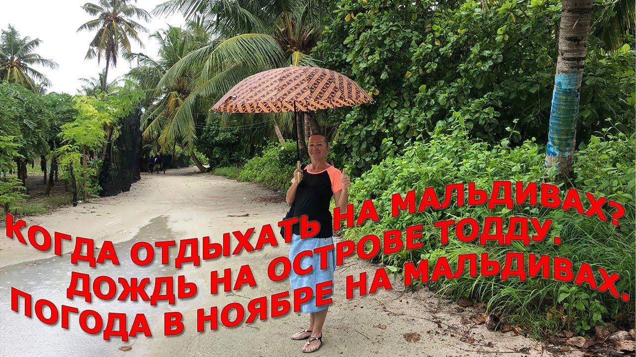 Когда отдыхать на Мальдивах|Дождь на острове Тодду|Погода в ноябре на Мальдивах