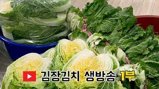 김장김치 생방송 live 1부 ( 배추 절이기&…