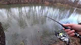 Где искать хищника осенью на реке Работающие секреты для ловли щуки осенью