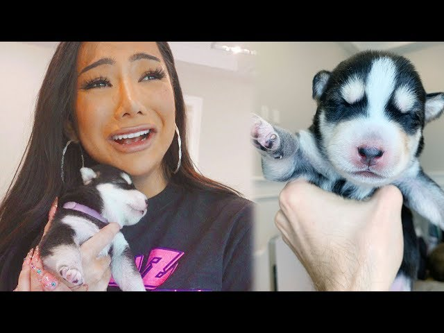 My Puppies made her Cry!!