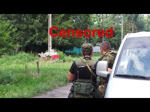Malaysia Airlines Flight MH17, Eyewitness Account. Translation From Russian