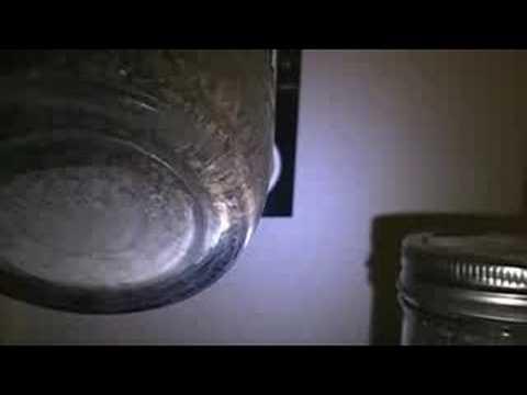 mycelium  jars colonizing