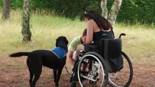Travailler à l'ADMR auprès des personnes en situation de handicap