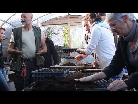 Les semis / Formation en permaculture avec Bruno Masson d'Alôsnys
