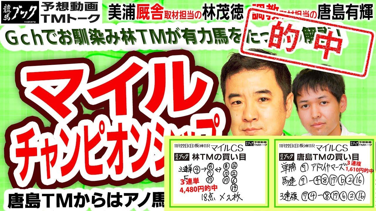 【競馬ブック】マイルチャンピオンシップ 2020 予想【TMトーク】(美浦)