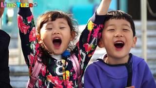라임 가족 홍콩오션파크 여행 종합편 | 상어가족을 만나다! 香港海洋公园 LimeTube & Toy