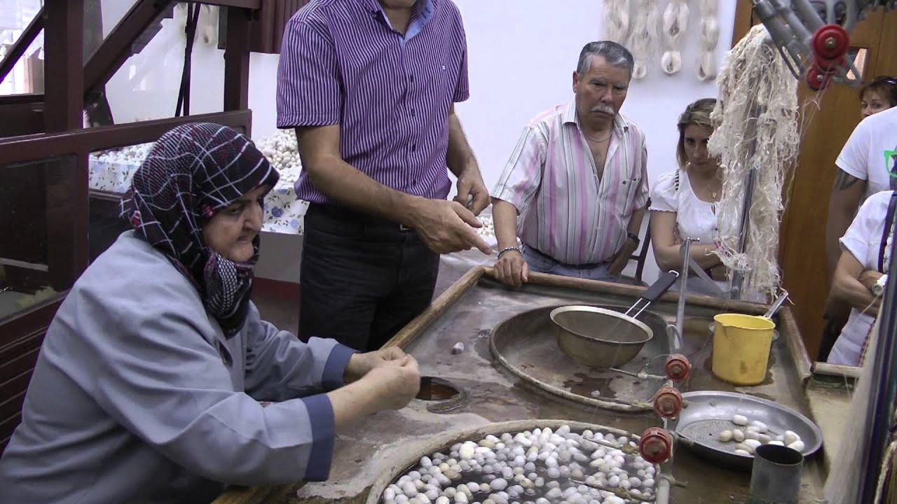 Escuela Cooperativa Fabrica De Alfombras De Kayseri