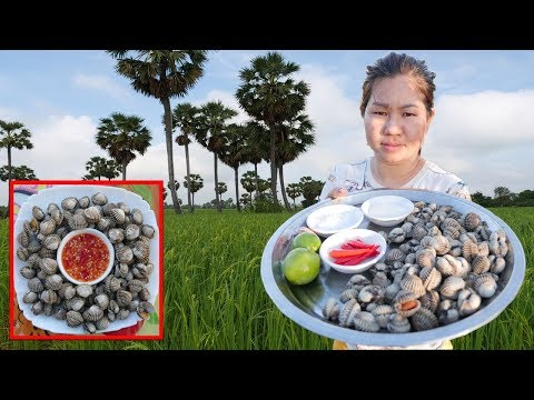 Yummy Boiled Blood Cockles Blood Clams Cooking Recipe – Cooking with Lakena