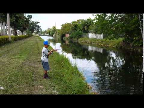 Canal fishing in miami fl youtube for Florida canal fishing