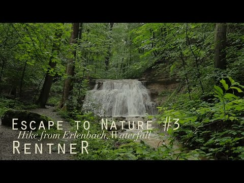 ASMR Escape to Nature #3 ✦ Small, relaxing Forest Waterfall (binaural 3D)