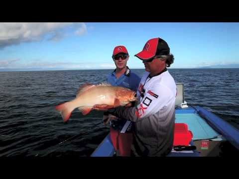 How to fish inshore with soft plastic lures