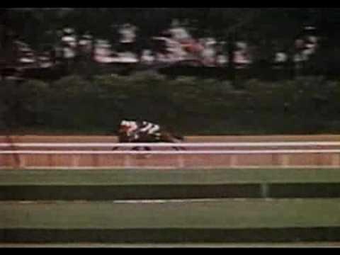 ruffian and foolish pleasure race jpg 1500x1000