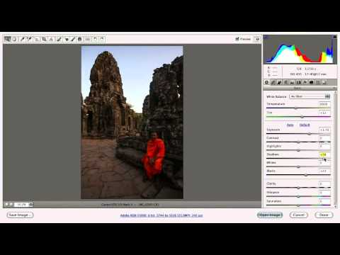 Camera RAW: Exposure and Contrast - Photoshop for Photographers with Ben Willmore