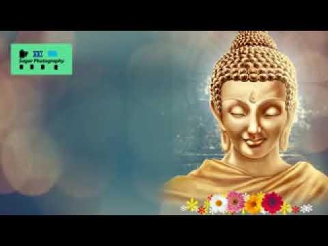 Amritvani hi buddhachi