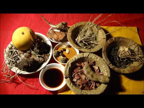 Stage 4 Breast Cancer: Indigenous Herbal Medicines. Research by Pankaj Oudhia