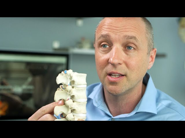 What causes back pain? Spinal Disc Anatomy Expert Explains