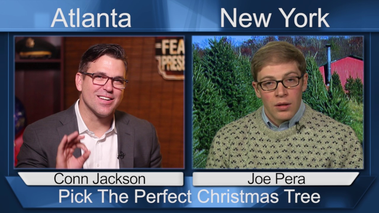 Pick The PERFECT Christmas Tree With TIps from Joe Perra - YouTube