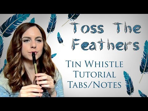 Toss The Feathers | The Corrs - Tin Whistle Tutorial, Tabs, Notes