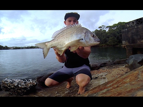 Don't Sweat The Small Things!! (Monster Bream)