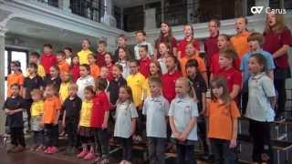 Weihnachtslieder für Kinder - LIEDERPROJEKT - SingsalaSing