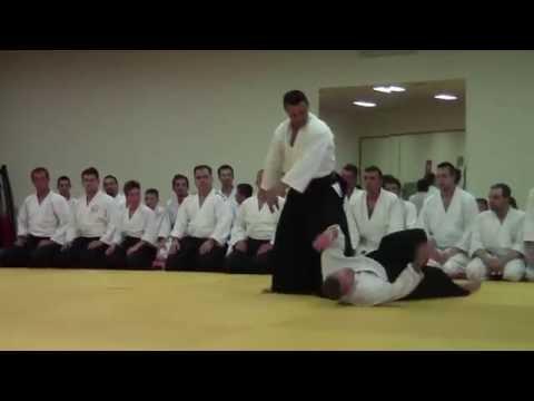 Aikido seminar Roberto Sánchez 6.Dan, Sarajevo 2016