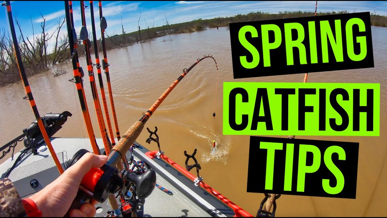 2021 Spring Catfish – Top 10 Tips For Catching Catfish This Spring