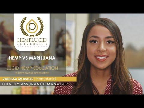 What is the difference between Hemp and Marijuana or Hemp vs Marijuana