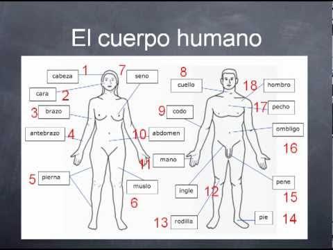 Spanish Wiring Diagrams Wiring Diagrams