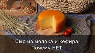 Сыр из молока и кефира Почему НЕТ