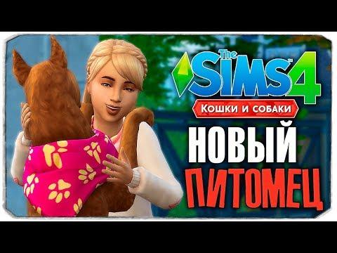 """НОВЫЙ ПИТОМЕЦ СОФИ! - The Sims 4 """"Кошки и Собаки"""" ▮"""