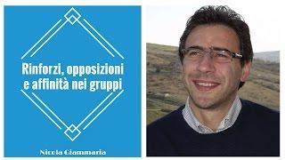Rinforzi, opposizioni e affinità nei gruppi