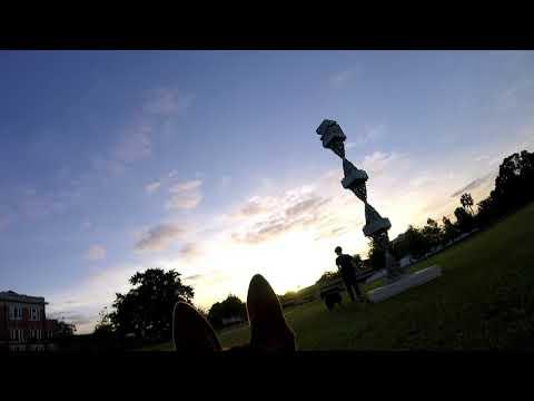 Dog Tour of Klutho Park in Jacksonville FL