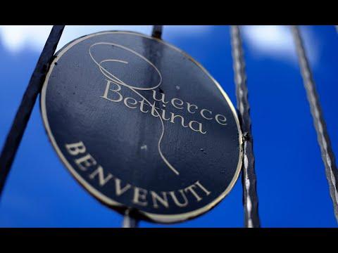 Wines of Tuscany & Piedmont : Discovering Brunello, Barolo & Barbaresco