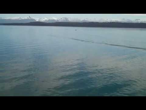 Ocean & Glacier Scenes Alaska May 2010