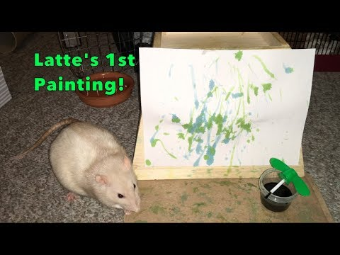 Latte's 1st  'Full' Painting!
