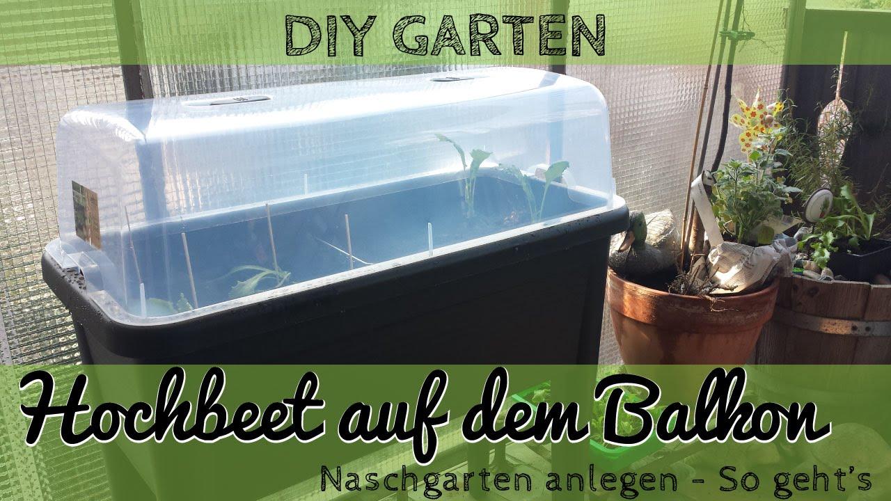 Hochbeet Anlegen Auf Dem Balkon Urban Gardening Youtube