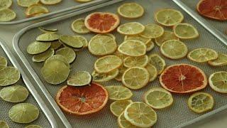 과일칩만들기(레몬,자몽,라임말리기) +리큅IRD5 건조…