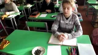 Біоадекватний ноосферний урок  Українська мова 5 клас  Тема Рнчення з прямою мовою як складне реченн