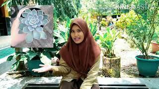Download Vlog bahaya NARKOBA Mp3