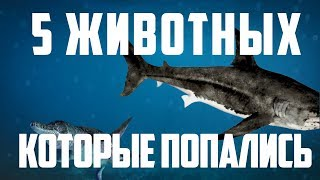 5 ДОИСТОРИЧЕСКИХ ЖИВОТНЫХ, КОТОРЫЕ ПОПАЛИСЬ НА КАМЕРУ | RUS VOICE [НАУКА]