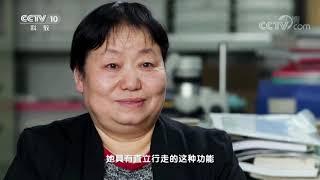 《地理中国》 20190811 百年地理大发现 我们的祖先| CCTV科教